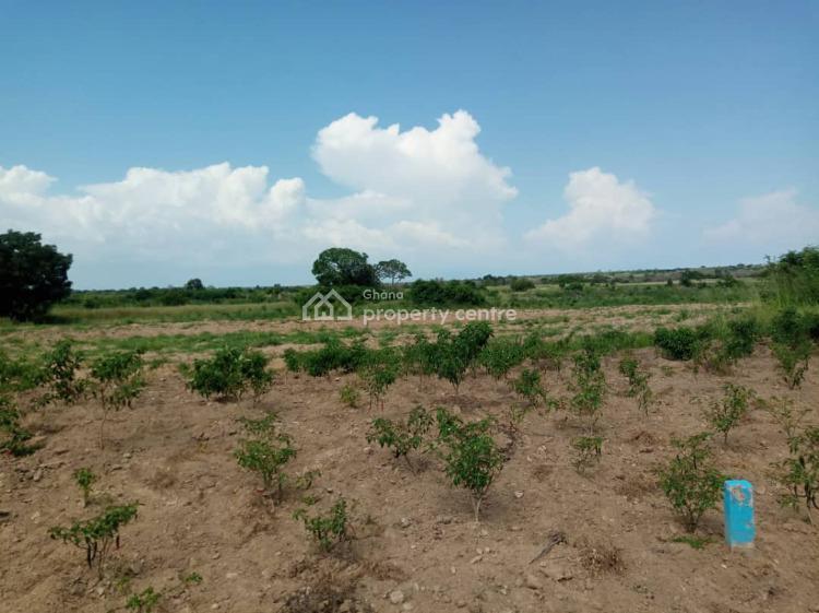 Litigation-free Land, Dawa, Ningo Prampram District, Accra, Mixed-use Land for Sale