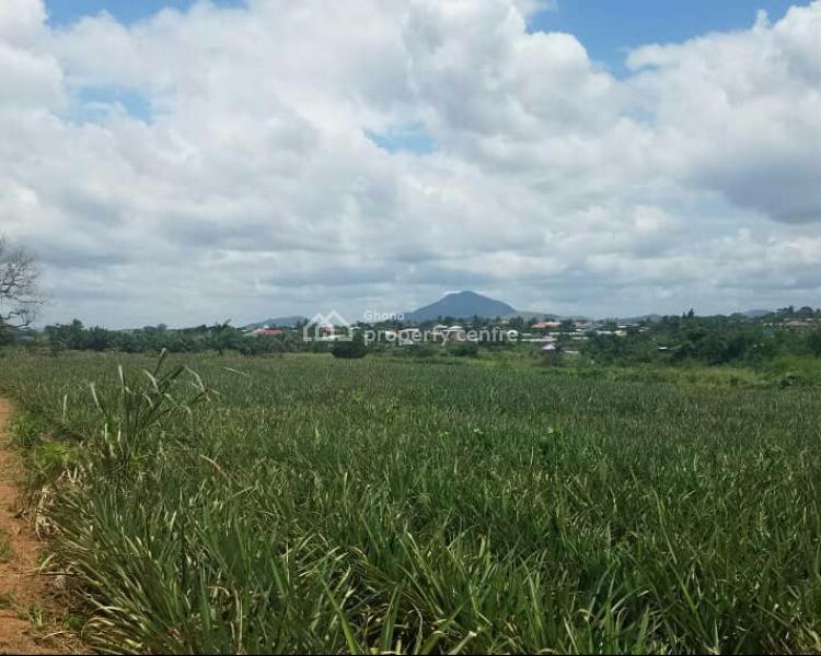 Registered 11 Acres Farm Land, Ahodwo - Nsawam, Akuapim South Municipal, Eastern Region, Mixed-use Land for Sale