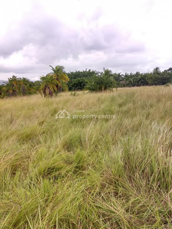 Land, Shai Hills on Akosombo Road, Near Akuse Junction Opposite Queens & Kings Teaching Hospital, Shai Osudoku, Accra, Industrial Land for Sale