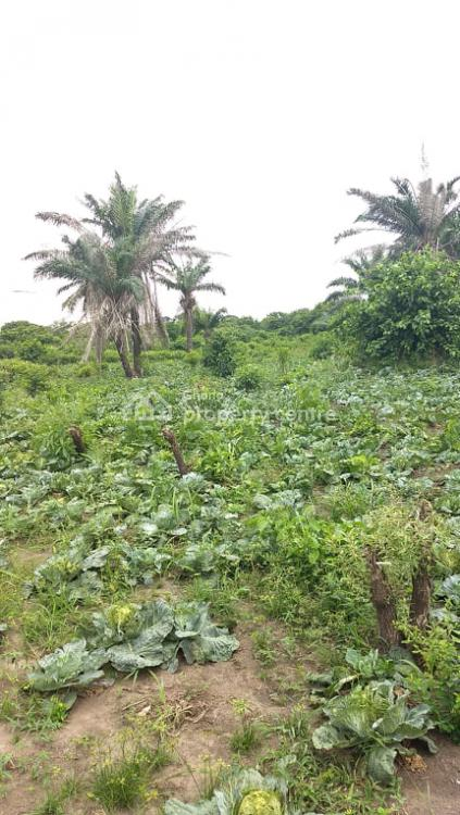 Farmland 1 Acre . for Cabbage,onion & Green Pepper, Shai Hills on Akosombo Road, Shai Osudoku, Accra, Mixed-use Land for Rent