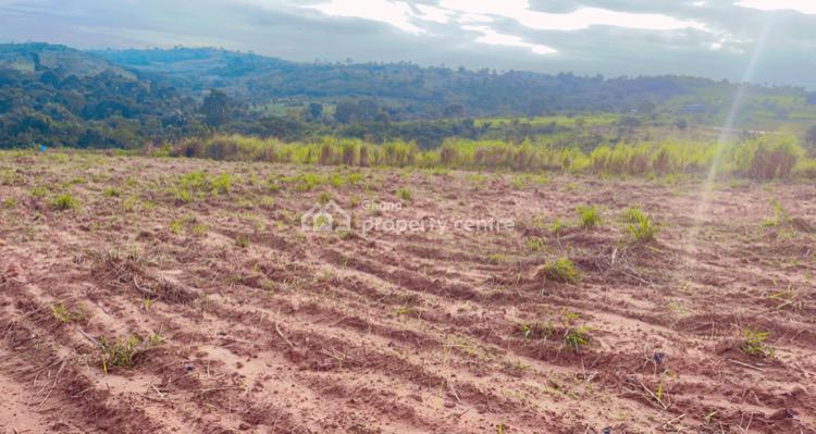 Acres of Farm Land Now Selling, Peduase, Aburi, Akuapim South Municipal, Eastern Region, Residential Land for Sale