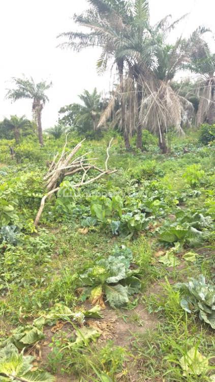 800 Acres of Farm Land, No Litigation, Shai Hills ,tema-akosombo Road, Shai Osudoku, Accra, Mixed-use Land for Sale