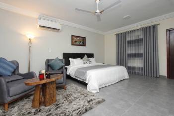1 Bedroom Apartment, Tseaddo, La Dade Kotopon Municipal, Accra, Mini Flat for Rent