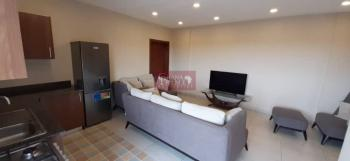 1 Bedroom Apartment, Abossey Okai, Accra, Mini Flat for Rent