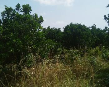Residential Lands, Santasi Road, Kumasi Metropolitan, Ashanti, Residential Land for Sale