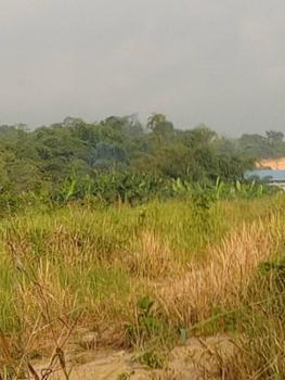 Exclusively Dry Plots of Land in Serene Area, Beside The Ofoase Kokoben Senior High School, Kumasi, Atwima Kwanwoma, Ashanti, Mixed-use Land for Sale
