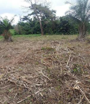 4 Plots of Land ( 2 Acre), Dominase Near (cape Coast University ), Kumasi Metropolitan, Ashanti, Mixed-use Land for Sale