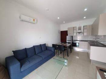 2 Bedroom Furnished Apartment, Ringway Estate, Osu, Accra, Apartment for Rent