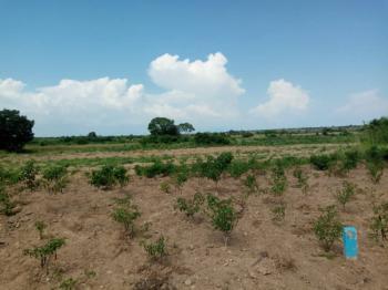 Titled Land, Dawa, Ningo Prampram District, Accra, Residential Land for Sale